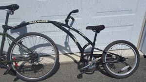 Bicycle trail-a-bike