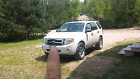 2010 Ford Escape xlt SUV looking to trade