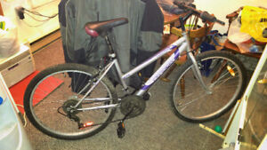 Supercycle SC1600 Mountain Bike
