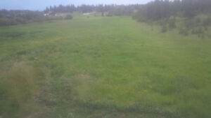 Hay Land for Lease in Prince George