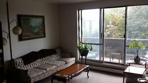 Spacious Apartment to share with just one other Kitchener / Waterloo Kitchener Area image 3