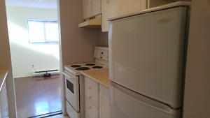 Nice Two-Bedroom Apartment in Downtown Tweed