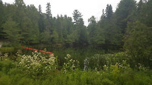 Maintained home on 17 acres with a private flowing pond! Kawartha Lakes Peterborough Area image 10
