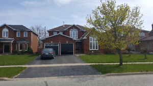 4+1 BEDROOMS SPACIOUS HOUSE IN SOUTH BARRIE FOR RENT