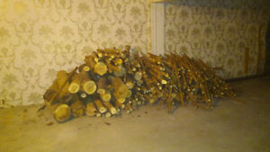 A Bunch of Firewood