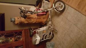 Électrique bike 250
