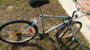 Supercycle 15 spd Mens Bicycle