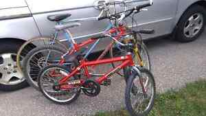 bikes 20 dollars each . big ones sold. only small left