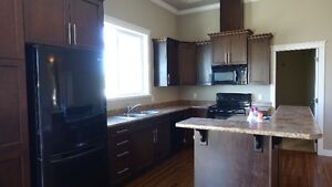 NEW, 4 BEDROOM HOME WITH GORGEOUS VIEW ON PROMONTORY MOUNTAIN