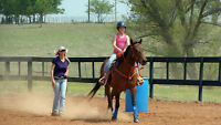 Western and English Riding Lessons. Certified Instructor.