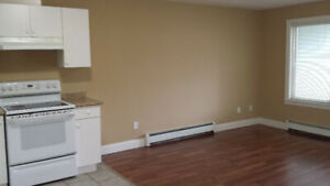 2 Bedroom Suite Close to City Center for Rent in Surrey