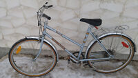 """Womens Supercycle 5 Speed Mountain Bike (26"""" Inch Tires)"""