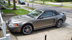 2002 Ford Mustang Bronze Cabriolet