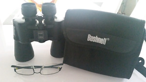 Bushnell 10x50 with bag