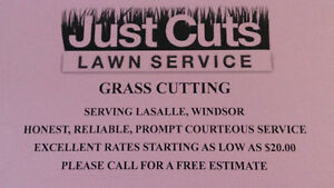 GRASS CUTTING SERVICE..CUT TRIM BLOWN OUT AS LOW AS $20.00