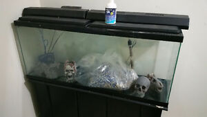 50-gallon fish aquarium w/ accessories