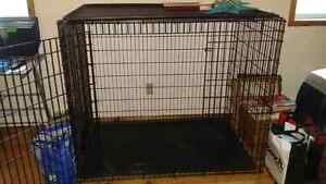 Colossal dog crate