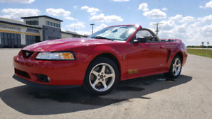 1999 Ford Mustang SVT Cobra Convertible
