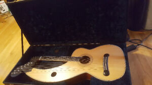 "HOLLOWAY ""DYER"" STYLE HARP GUITAR w custom hard case $900"