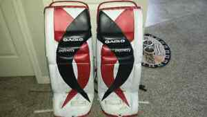 Eagle Infinity Goal Pads And Sherwood Chest And Arms