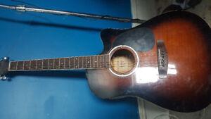 Jayj acoustic electric guitar