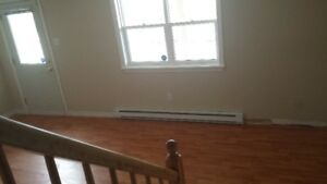 Newly renovated apartmet available