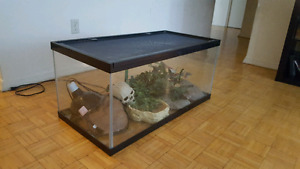 Very large reptile tank with accessories - $60