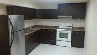 1 Bedroom Basement apartment for rent in Maple (Keele/Rutherfo)