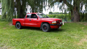 99 5.2l Dodge Dakota Sport, in great shape!
