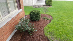 Landscaping for brand new homes London Ontario image 4