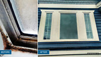 Solutions for Window Condensation and Mould Problem