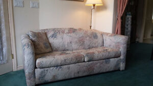 Gently Used Pull-Out Couch- QUICK SALE