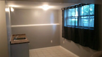 Residential and Commercial renovations