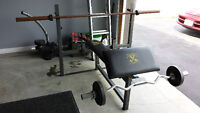 workout bench with preacher curl attachment and two bars