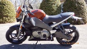 Buell Lightning Xb12Ss 2008