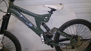 Specialized Big Hit Bike Frame and some parts FOX DH