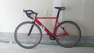 Cervelo P2K 54 cm - beautiful, custom bike