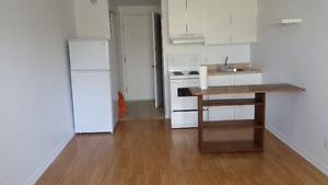 Studio Apartment in the Plateau, 3 mins from Laurier metro