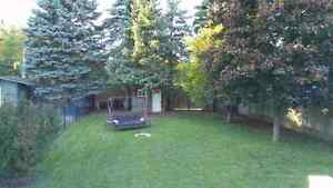 CONDITIONALLY SOLD Kitchener / Waterloo Kitchener Area image 5