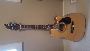 Brand new Denver acoustic guitar