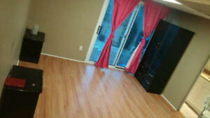 Markham Private Bachelor Walkout Bsmt Apt /All Incl