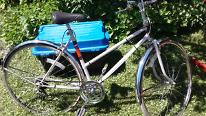 2 Adult Bicycles