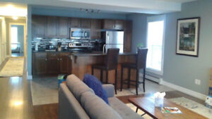 Large Executive 2 Bedroom Furnished Apt