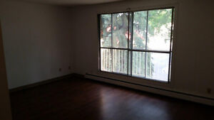 1 bdrm apartment for rent in U of A Edmonton area