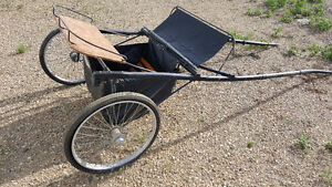 Jerald Sulky Show Cart for Sale