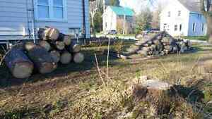 Logs for sale.. Make an offer.