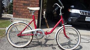 Rog Pony Folding Bike