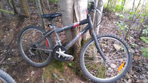 NEXT boys bike. 20inch