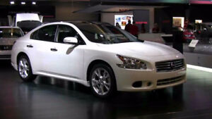 RARE! Nissan Maxima Platinum Package with panoramic roof