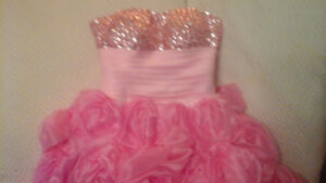 Pink Princess Ballroom Gown with Pink Roses on Bottom